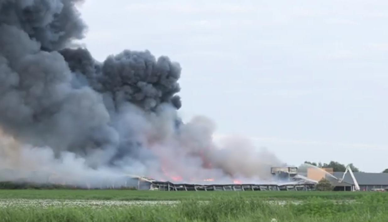Honderdduizenden kippen omgekomen na zeer grote brand