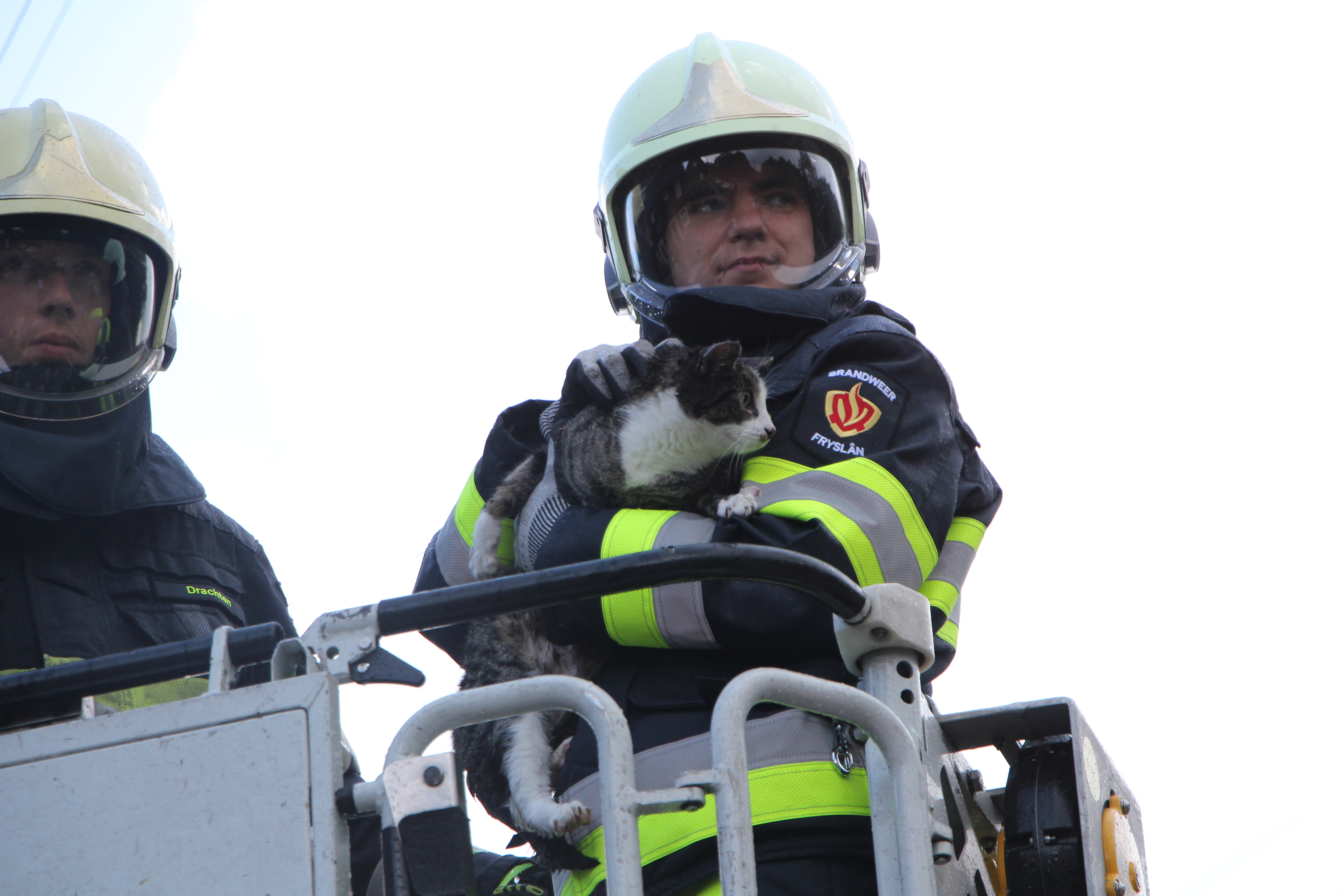 Brandweer redt kat uit dakgoot in Drachten