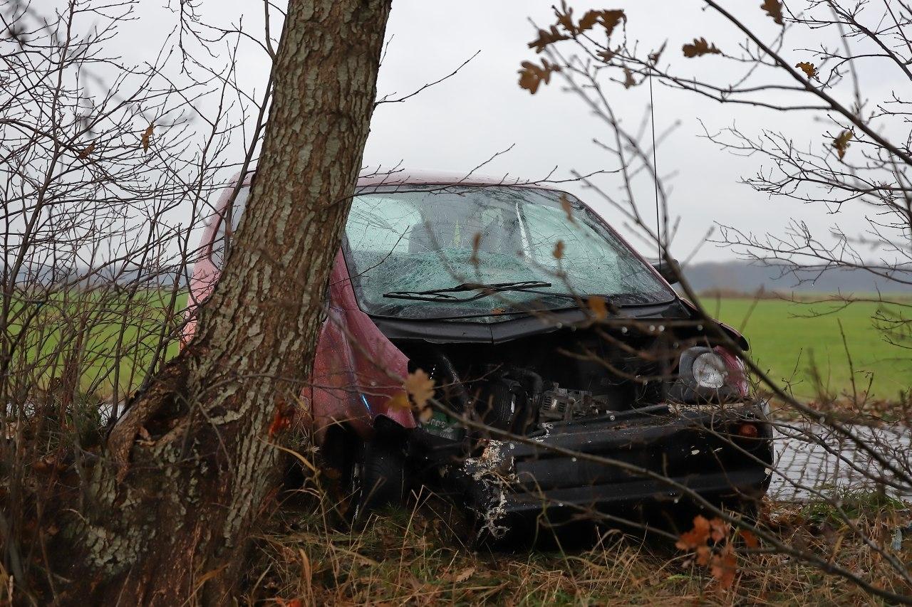 Bestuurder brommobiel gewond na botsing met boom
