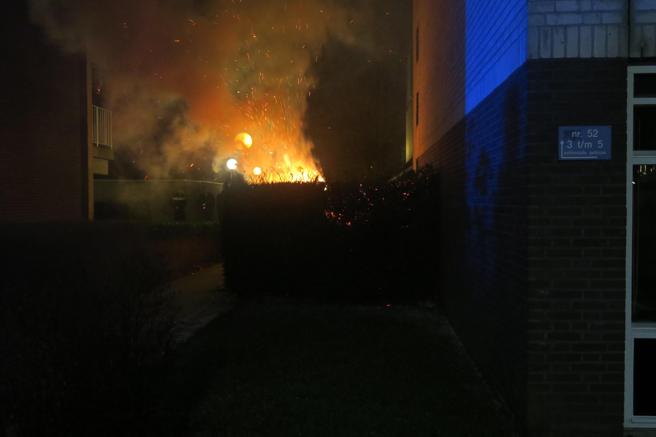 Wederom coniferenhaag in vlammen op dit keer aan de Berglaan in Drachten