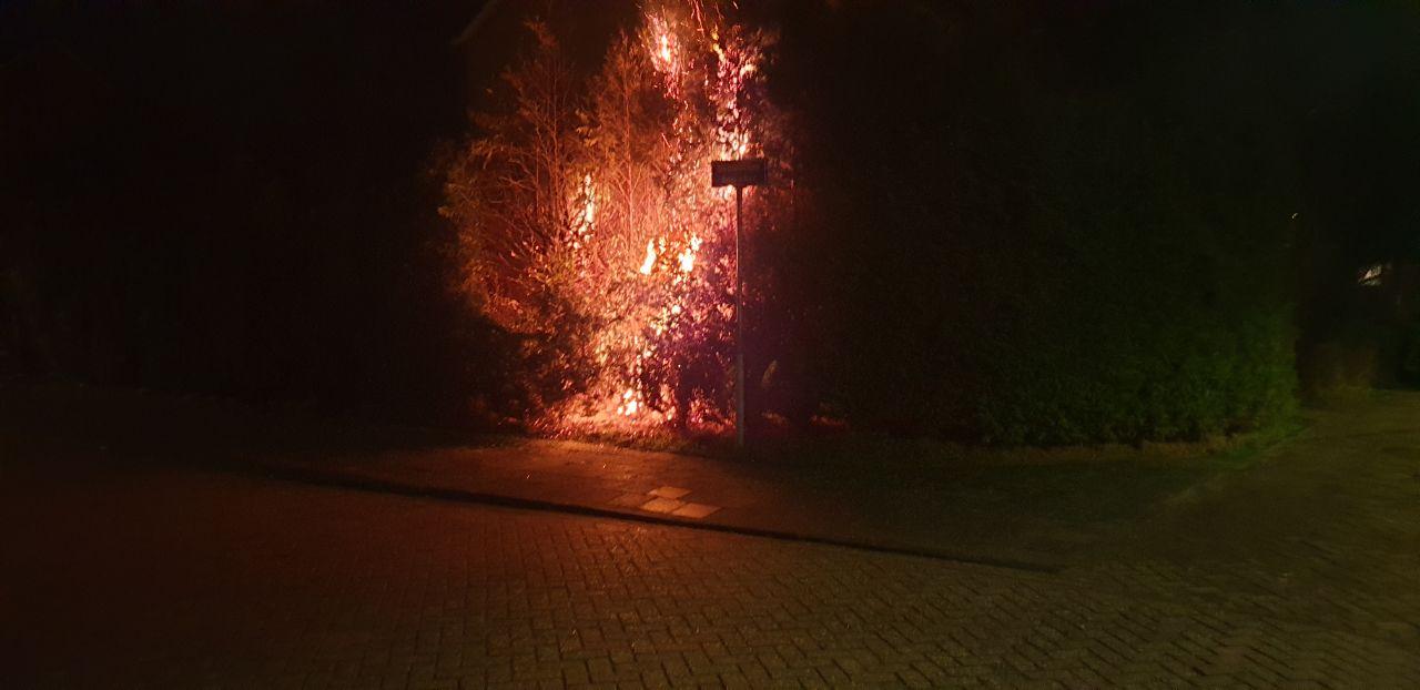 En weer vliegt er een coniferehaag in de brand Aan de Bouwakker in Drachten