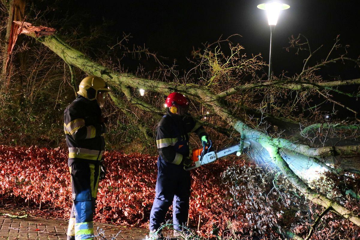 Brandweer haalt omgewaaide boom van de weg in Drachten