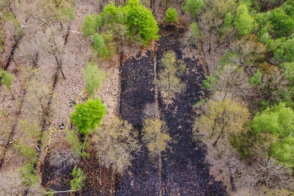 Veenbrand in bos bij Kortehemmen snel onder controle